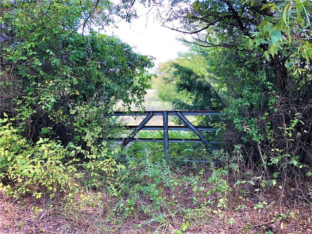 Lot 4 County Rd 1110 Celeste, TX 75423