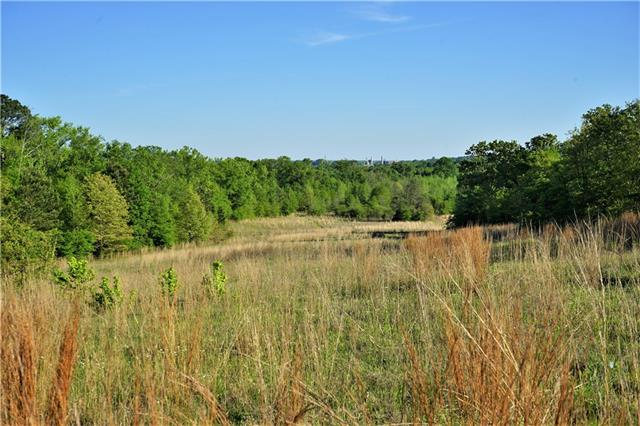 12733 County Road 431, one of homes for sale in Tyler