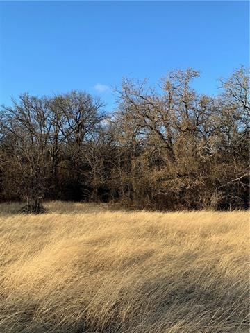 primary photo for Tbd 3 COUNTY ROAD 3381, Paradise, TX 76073, US