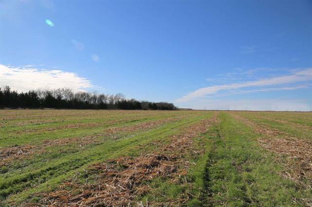 4085 Farm Road 196 S Blossom, TX 75416