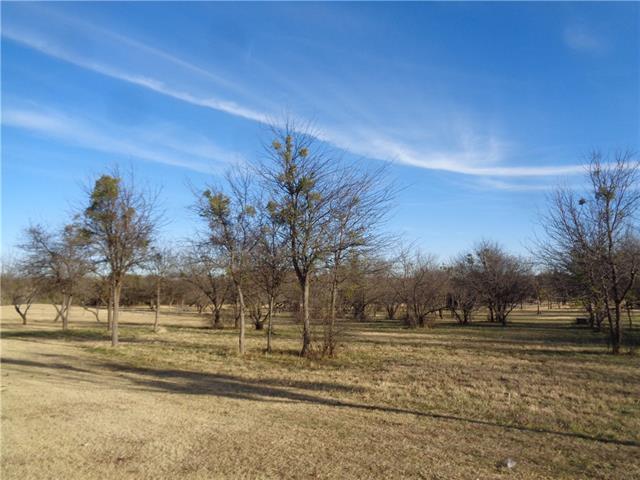 189 Pinnacle Peak Lane, Weatherford in Parker County, TX 76087 Home for Sale
