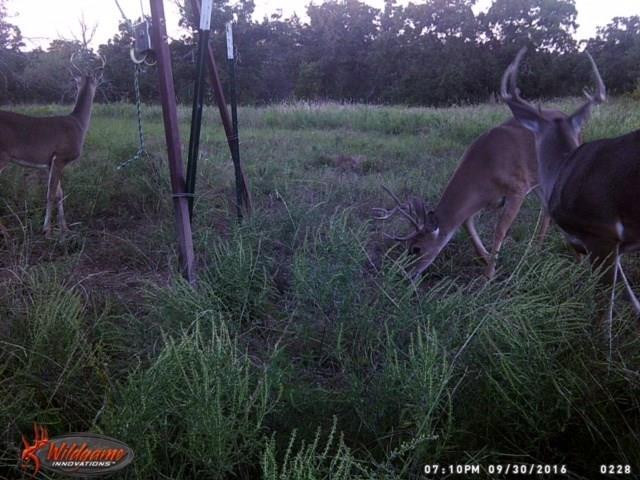 00 Hwy 199 Jacksboro, TX 76458