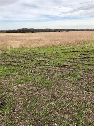 Tbd Cr 3233(tr 1) Lone Oak, TX 75453
