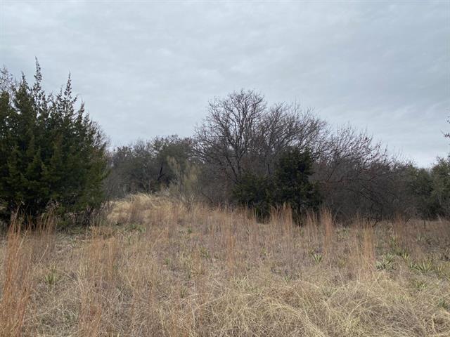 Tbd County Road 606, Brownwood, TX 76801