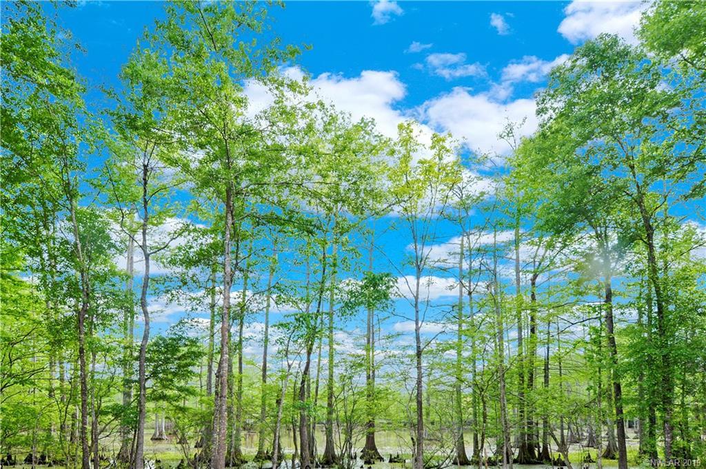 8020 W Lakeshore Drive, Shreveport, Louisiana