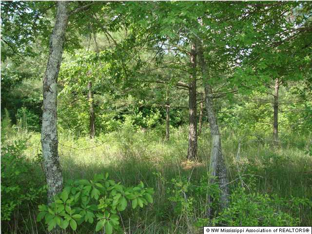 12.64 acres by Independence, Mississippi for sale