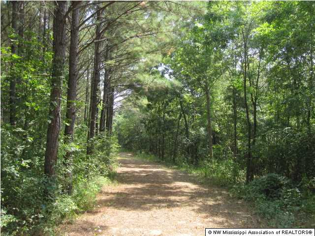 Real Estate for Sale, ListingId: 32031309, Potts Camp, MS  38659
