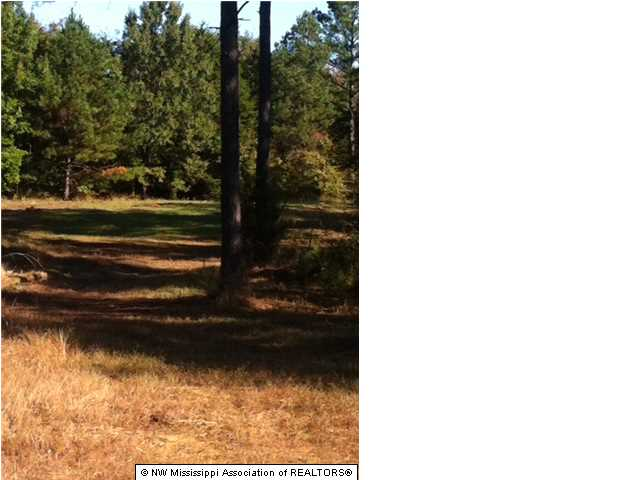 Real Estate for Sale, ListingId: 32031327, Senatobia, MS  38668