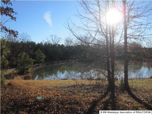 Real Estate for Sale, ListingId: 32031447, Hickory Flat,MS38633