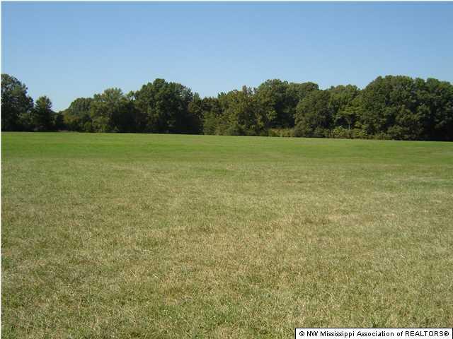 1466 Merryhill Ranch Rd, Senatobia, MS 38668