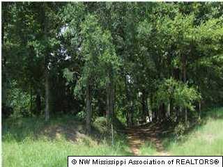 Real Estate for Sale, ListingId: 35809225, Olive Branch,MS38654