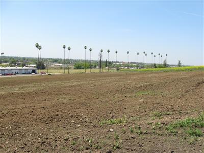 Real Estate for Sale, ListingId: 31756771, Porterville,CA93257