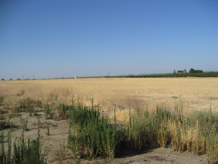 Real Estate for Sale, ListingId: 34348908, Porterville,CA93257