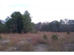 Real Estate for Sale, ListingId: 29479145, West Creek,NJ08092