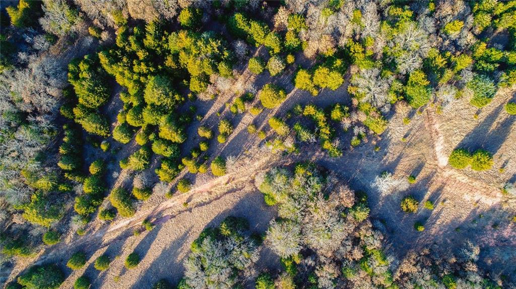 10500 E Coffee Creek Road - photo 4