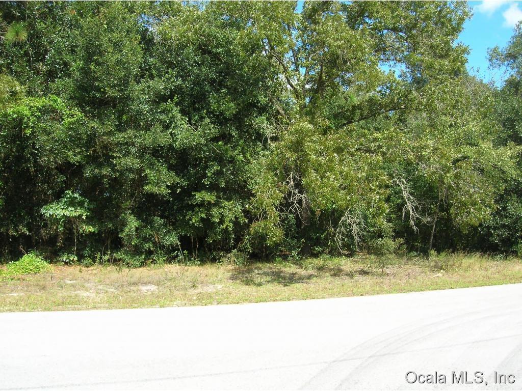 Real Estate for Sale, ListingId: 25514174, Summerfield,FL34491
