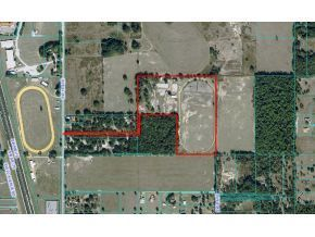 31 acres in Ocala, Florida