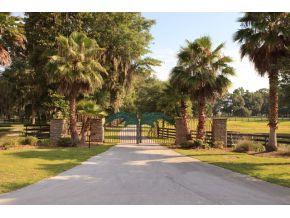 Real Estate for Sale, ListingId: 30010580, Reddick,FL32686