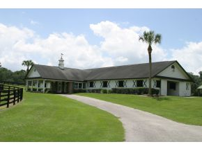 29.5 acres in Ocala, Florida