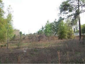 Real Estate for Sale, ListingId: 25513328, Ocala,FL34481