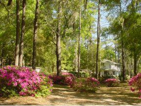 Real Estate for Sale, ListingId: 30858612, Williston,FL32696
