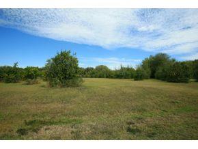 Real Estate for Sale, ListingId: 25515942, Weirsdale,FL32195