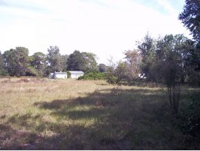 Commercial Property for Sale, ListingId:25515261, location: 7365 SW HWY 200 Ocala 34476