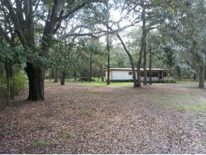 61.18 acres in Bronson, Florida