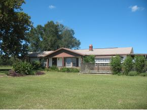 5.34 acres in Anthony, Florida