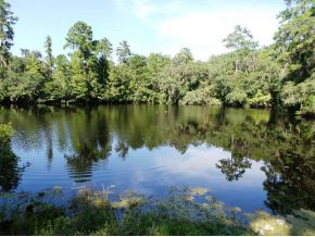 Land for Sale, ListingId:25515969, location: 2500 E WITHLACOOCHEE TR Dunnellon 34434