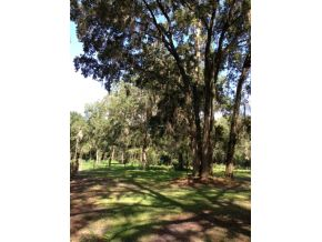 34.03 acres in Reddick, Florida