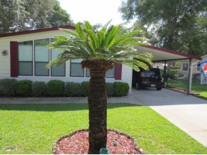 2510 Se 177th Ave, Silver Springs, FL 34488