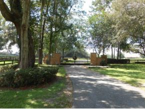 42 acres in Ocala, Florida