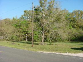 Real Estate for Sale, ListingId: 30858606, Williston,FL32696