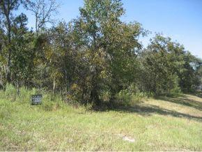 Real Estate for Sale, ListingId: 25902248, Ocala,FL34481