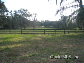 81.79 acres in Reddick, Florida