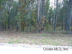 Real Estate for Sale, ListingId: 31003511, Morriston,FL32668
