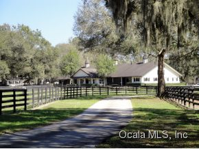 40 acres in Ocala, Florida