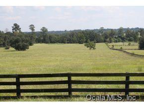 Real Estate for Sale, ListingId: 34787399, Reddick,FL32686