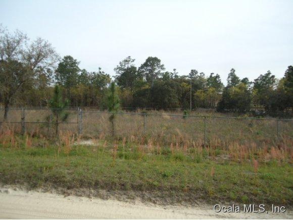 Real Estate for Sale, ListingId: 27587016, Ocala,FL34481