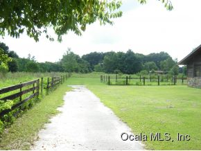 24.05 acres Summerfield, FL