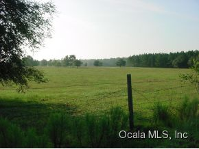 Real Estate for Sale, ListingId: 30858636, Williston,FL32696