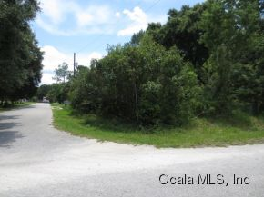 Real Estate for Sale, ListingId: 29130513, Ocklawaha, FL  32179