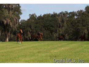 Real Estate for Sale, ListingId: 29164147, Ocala,FL34480