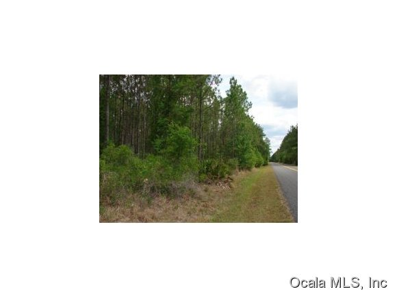 Real Estate for Sale, ListingId: 29390024, Ft Mc Coy,FL32134