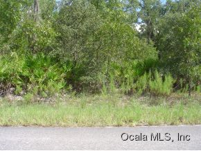 Real Estate for Sale, ListingId: 29836445, Ocklawaha,FL32179