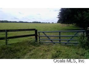 Real Estate for Sale, ListingId: 30010612, Anthony,FL32617