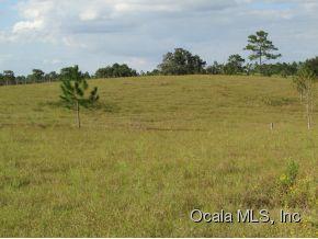 Real Estate for Sale, ListingId: 29963875, Williston,FL32696