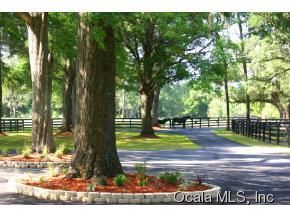 Real Estate for Sale, ListingId: 34787571, Ocala,FL34481