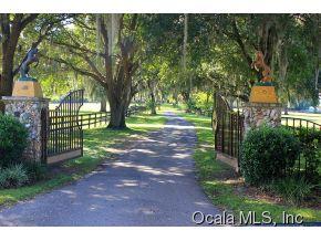 Real Estate for Sale, ListingId: 34787596, Ocala,FL34481